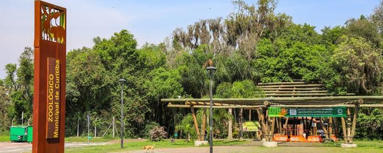 Zoo de Curitiba disponibiliza 200 ingressos por dia para passeios a pé